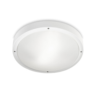 opal-white-ceiling-360