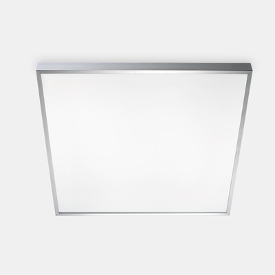 toledo-ceiling-300-polished